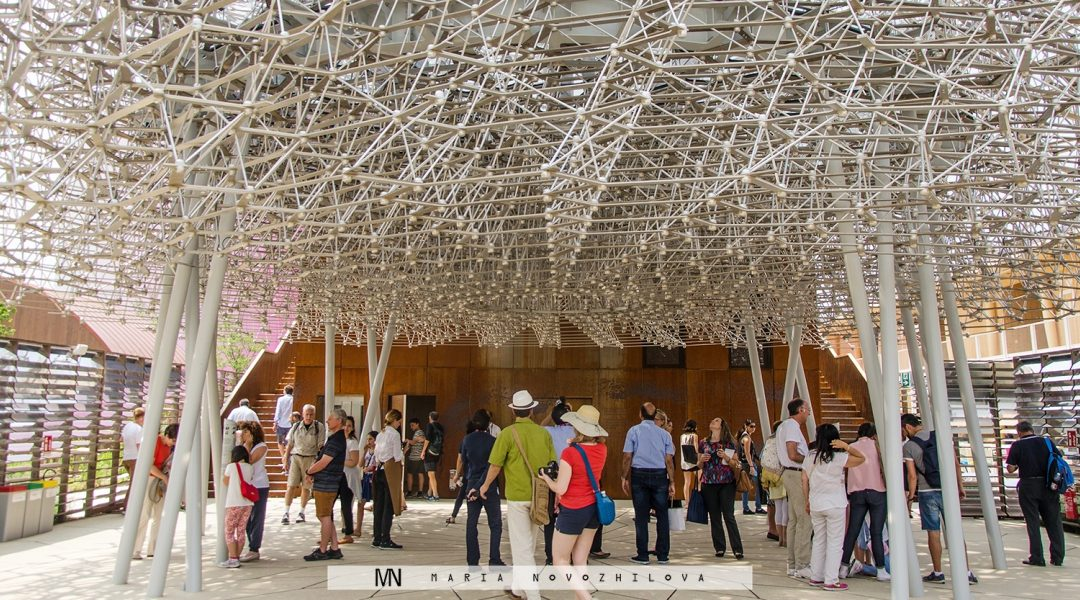 Best of Expo 2015: Be a honeybee at the UK pavilion