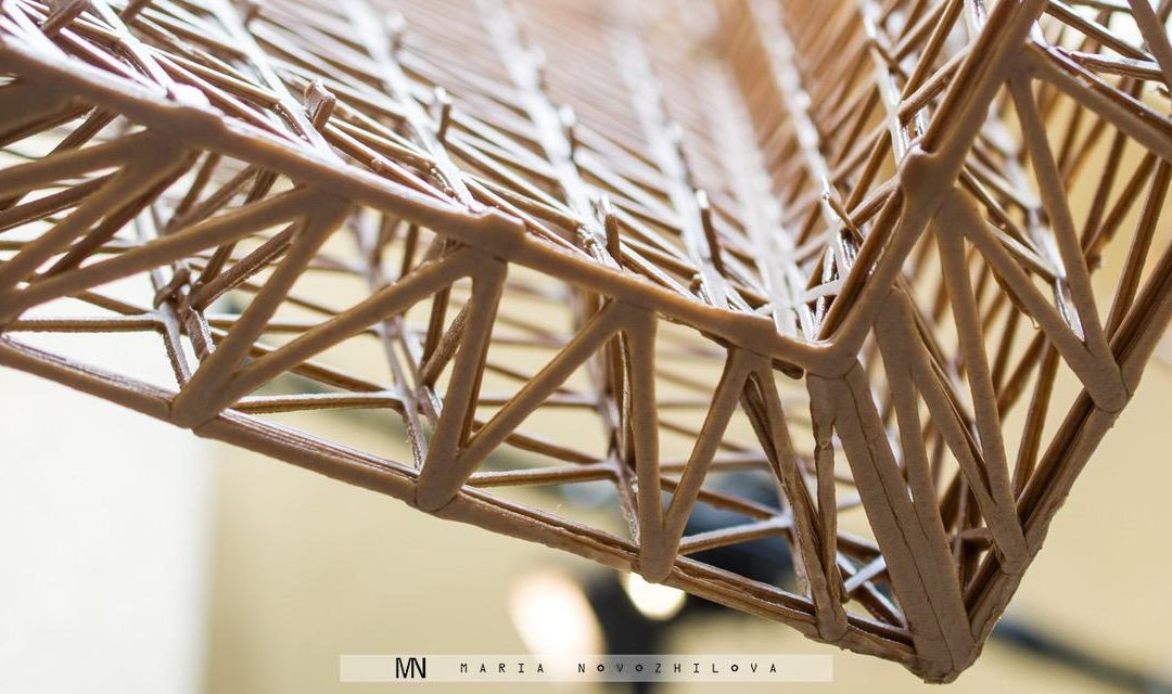 Plastic Made of Wood by Mamou-Mani for COS